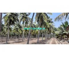 5 Acre Farm Land for Sale Near Kudimangalam