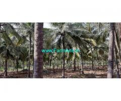 4.25 Acre Agriculture Land for Sale Near Periyapatti