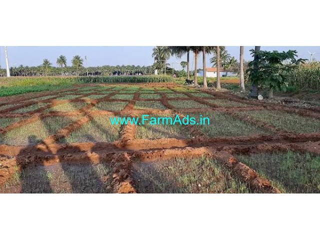 2.50 Acre Agriculture Land for Sale Near Dharapuram