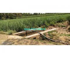 1.38 acres agriculture land for sale at Maddur Mandya road