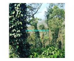 15 Acre Coffee Land for Sale Near Sakleshpur