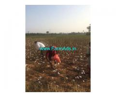 2.25 Acre Agriculture land for sale at Amangal