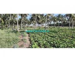 3.50 Acre Farm Land for Sale Near Udumalaipettai