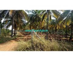 25 Acres Agriculture Land for Sale near Sira