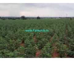6 Acres Agriculture Farm Land for Sale near Ranga Reddy