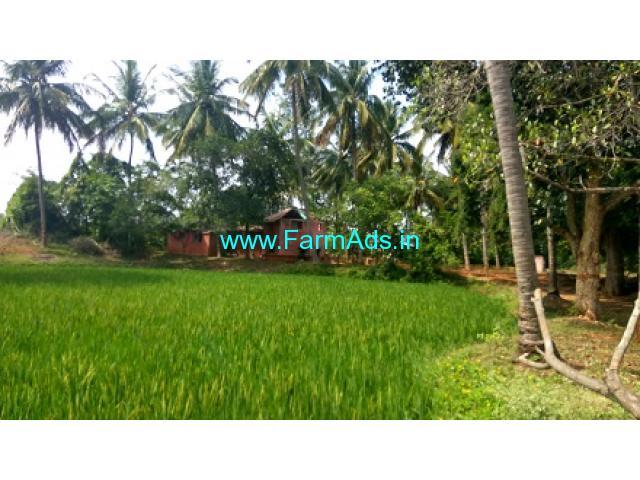 2.65 Acres Agriculture Land for Sale near Mandakalli airport