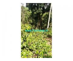 47 Acres Coffee Estate for Sale near Coorg