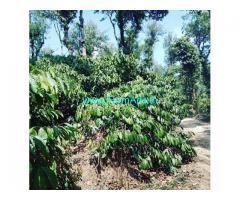 9 Acre Coffee Estate for Sale Near Sakleshpur