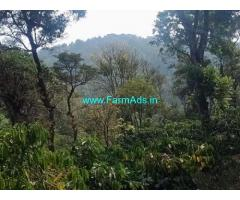 70 Acre Coffee Estate with Farm house for Sale Near Chikmagalur