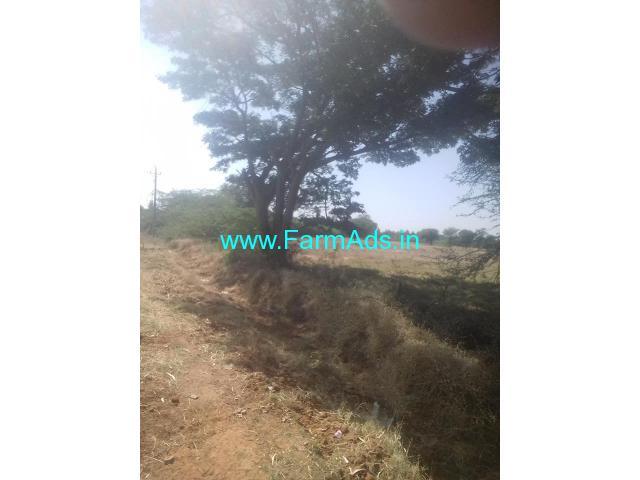 7 Acre Agriculture Land for Sale Near Maskal