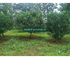 13 Gunta Agriculture Land for sale Near Sawla