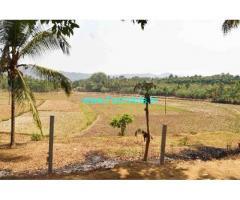 12.29 Acre Farm Land for Sale Near Pavukkonam