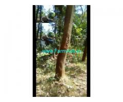 50 Cent Farm Land for Sale Near Palakkad