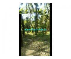 57 Cent Farm Land for Sale Near Palakkad