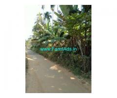 6.5 Acre Farm Land for Sale Near Palakkad