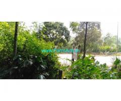 1.75 Acres Farm Land for Sale near Chikmagalur