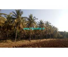 5 Acre Agriculture Land For Sale in Hiriyur
