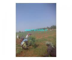 8 Acre Agriculture Farm Land for sale Near Hiriyur