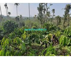 2.5 Acre Agriculture Land for Sale Near Kalpetta