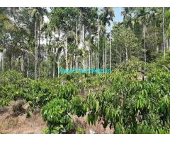 2 Acre Agriculture Land for Sale Near Meppadi