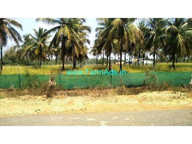 3 Acres Agriculture Land for Sale near Chikkabagilu