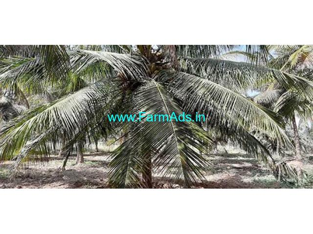 4 Acre Agriculture Land for Sale Near Mettukadi,Palladam
