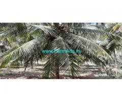 4 Acre Agriculture Land for Sale Near Mettukadi,Palladam
