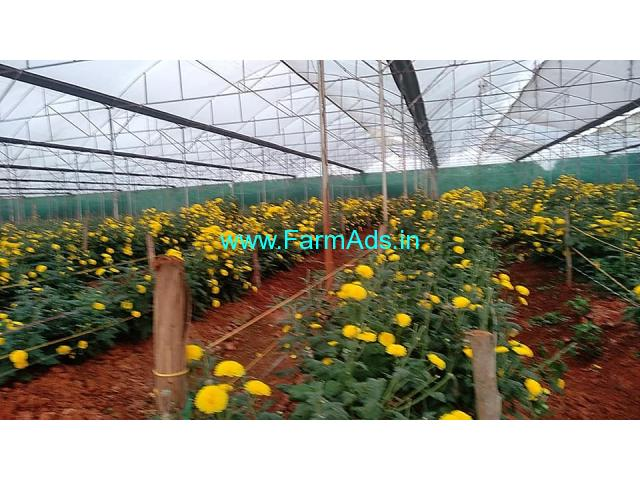 16 Acre Agricultural land for Sale Near Kudur