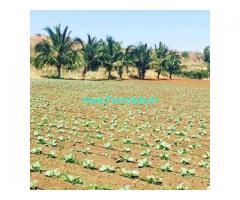 1 Acre 21 Guntas Farm Land for Sale Near Doddabalapur