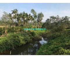 29 Acre Coffee Plantation for Sale Near Mudigere
