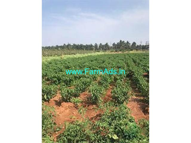 2 Acre Farm Land for Sale Near Periyapatti