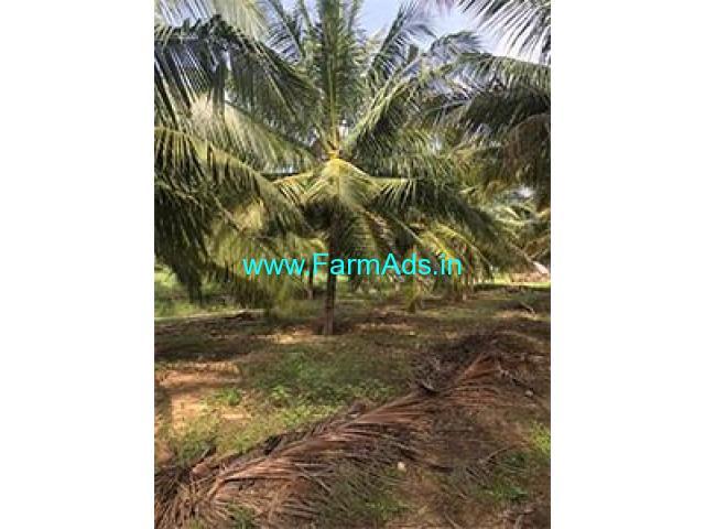 5 Acre Farm Land for Sale Near Periyapatti