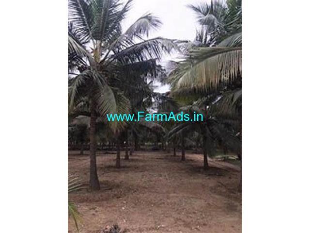 1.5 Acre Farm Land for Sale Near Periyapatti