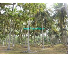 3.5 Acres Agriculture Land for Lease in Hullahalli
