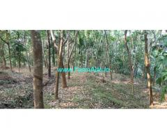 8 Acres Rubber Estate with 3 Acre open Land for Sale near Bandadka