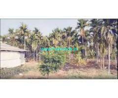 12 Acre agriculture Land for sale near Hiriyur