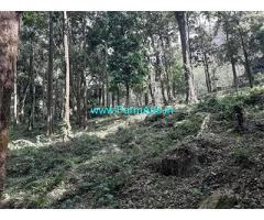 6 Acre Farm Land for Sale Near Vythiri