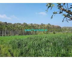 7 Acre Farm House for Sale Near Wayanad