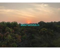 20 Acres of Alphonso Orchard for sale near Ramanagar