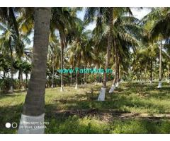 3 Acres of Farm Land sale at Palladam to Trichy NH road