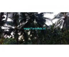 55 Acres Agriculture Land for Sale near Uppala