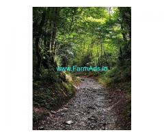6 Acre Land for Sale Near Sakaleshpura