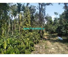 8.5 Acre Robasta COFFEE Land for Sale Near Sakalehspur