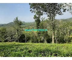 1.5 Acre Agriculture Land For Sale Near Mananthavady