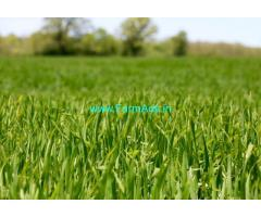 Agricultural Land 22 Acres for Sale Chhindwara