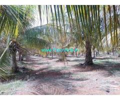 140 Acres Farm Land for Sale Near Penukonda