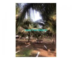4.19 Acres Farm Land for Sale Near Periyapatti