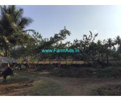 Coconut farm land for sale 5.07 Theni