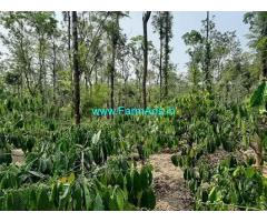 3.75 Acre Farm Land for Sale Near Mananthavady