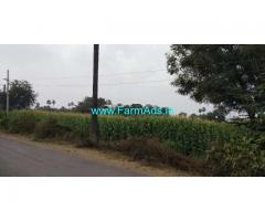 1.5 Acre Farm Land For Sale Near Kothapeta,Warangal Railway Station